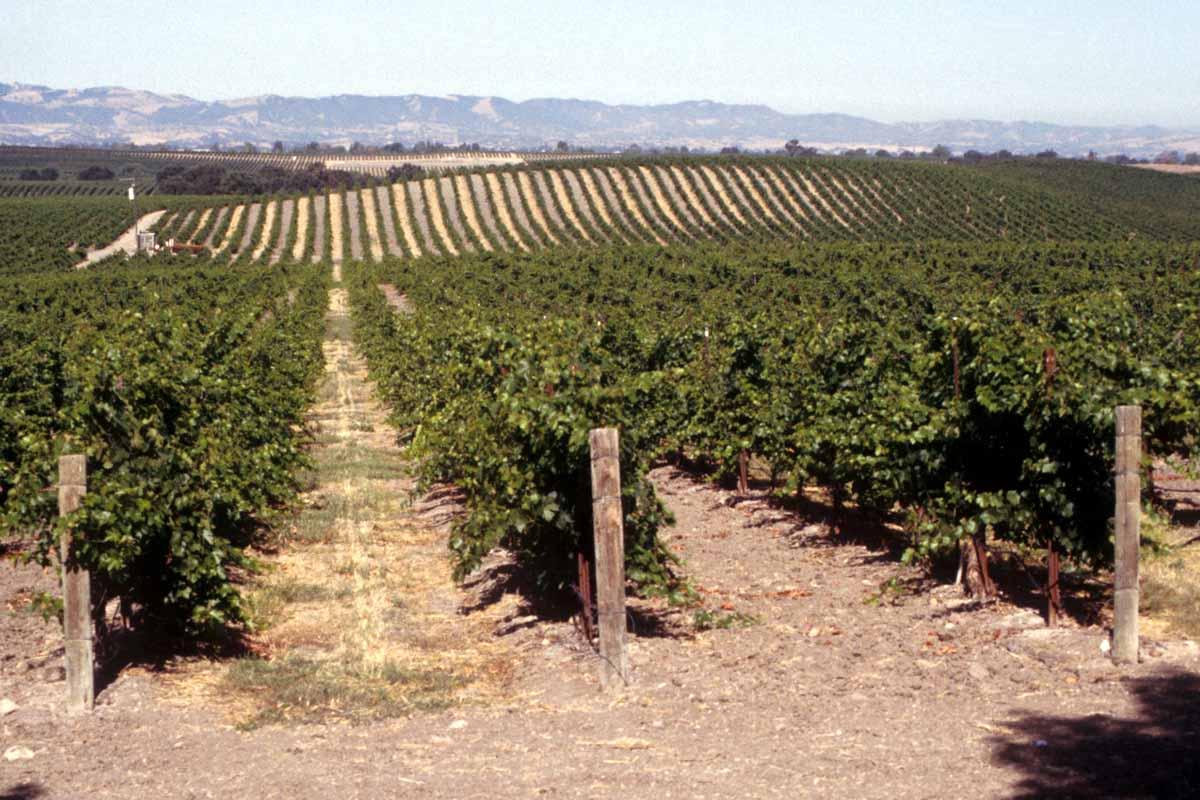 150927-California